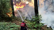 Osm životů si již vzal požár v Turecku. Plameny způsobené horkem sužují i jih Itálie a řecké ostrovy