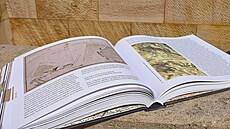 Knižní tipy od ředitele nadace, které není papír cizí. Jaké knihy nesmí chybět na jeho nočním stolku?