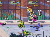 Teenage Mutant Ninja Turtles: Shredder