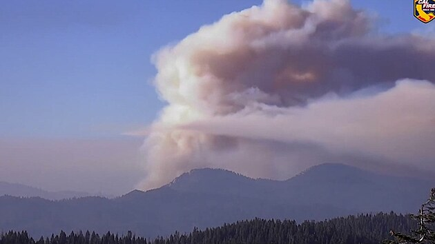 Kalifornský lesní požár se blíží k největšímu stromu světa