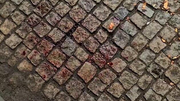 Po potyčce střílel muž na ulici v centru Plzně