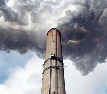 Znečištěné ovzduší rostlinám prospívá