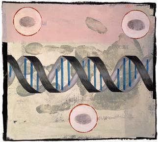 Geny vznětlivého chování