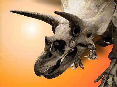 Dinosauři s peřím a nikdy jinak