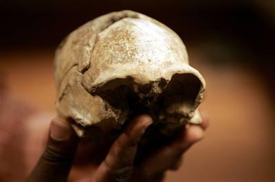 Lidské druhy žily vedle sebe jako dnešní opice