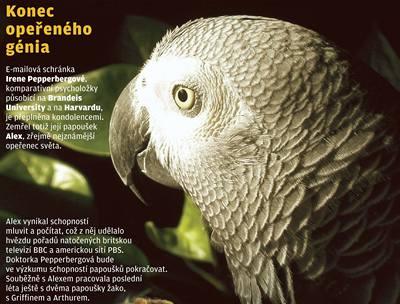 Papoušek, který nepapouškoval