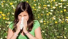 Čechy trápí alergie. Nejčastěji senná rýma a astma