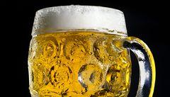 České pivo se v kuchyni hodí k masu, ale i k exotickému ovoci