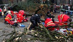 Znalci: Za pád stromu mohou úředníci. A policie je obvinila