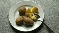 Pěstováním speciálních brambor lze bojovat proti rakovině i infarktu