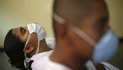 Návrat prasečí chřipky? V Británii zabil virus už deset lidí