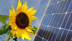 Energie ze slunce příliš vynáší, ministerstvo chce snížit výkupní cenu