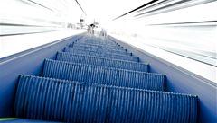 Dravec se zachytil pařátem do eskalátoru ve washingtonském metru