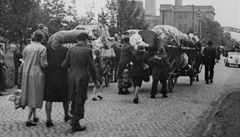 Muzeum vysídlenců v Berlíně by mohlo mít také expozici o masakru v Ústí