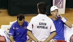 Štěpánek i Berdych jsou nadále připraveni reprezentovat