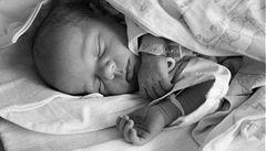 Plodnost mužů hrozivě klesá