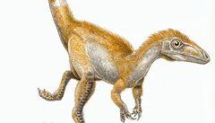 Z fosílie vykoukl zrzavý dinosaurus s pruhovaným ocasem