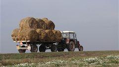 Traktorem přejel šest divočáků na poli, hrozí mu pět let