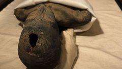 Nefertiti nebyla Tutanchamonovou matkou, tvrdí vědci
