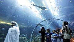 Obří akvárium se žraloky praská, návštěvníci jsou evakuováni