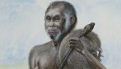 Předkové floreského hobita žili na ostrově o 200 000 let dříve
