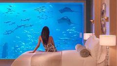 Žralok z hotelu v Dubaji je zpět v moři. Vedení ustoupilo ekologům