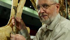 Tyranosauři žili podle australských vědců i na jižní polokouli
