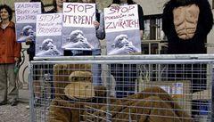 Ochránci zvířat spouštějí kampaň proti Rakousku