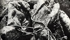 USA  věděly o katyňském masakru už za války, ze zpráv zajatců