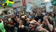 Tisíce lidí volaly po legalizaci konopí, senioři dostávali semínka
