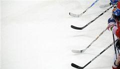 Lev Hradec Králové má nakročeno do KHL, projekt je již schválen