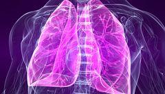 Vytvořili jsme plicní tkáň, která sama dýchá, hlásí vědci