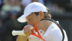 Berdycha po Wimbledonu opustila forma, na turnaji v USA skončil už ve čtvrtfinále