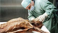 Ötziho našli před 20 lety. Kým 'muž z ledu' byl?