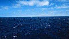 Ryby mají plast v žaludcích. Středozemní moře je ho plné