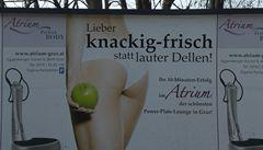Sexistická reklama bude ve Vídni tabu, protože ženy perou a vaří