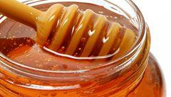 Veterináři vyhlásili opatření kvůli varroáze, ničivé včelí epidemii