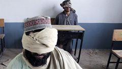 Hysterie kolem mučení. Fouknutí za krk může poškodit teroristovy city