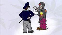 Ani malé množství marihuany není legální, radí policistům příručka