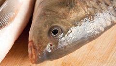 Srdce chrání tuky z ryb. Stárnutí brání vitamin D