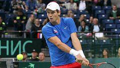 TIME OUT LN: Na Davis Cupu zůstalo jen u představ