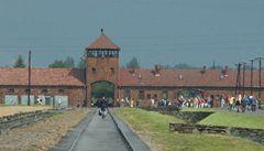 Popírač holocaustu provede turisty Osvětimí a Treblinkou