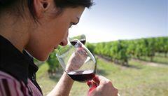 Víno pijí více ženy a vzdělaní lidé, ukázal průzkum