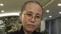 Liou Siao-po se ve vězení setkal s manželkou, rozplakal se dojetím
