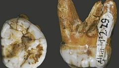 Vědci potvrdili, že v jeskyni na Sibiři našli ostatky neznámého lidského druhu