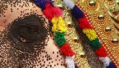 Cirkusoví sloni v Maroku se stali rukojmími evropských směrnic