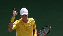 Berdych je v pořádku, Davis Cup proti Kazachstánu hrát bude