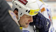 TIME OUT LN: Straka zvedá hokej v Plzni. Zasloužil by sochu