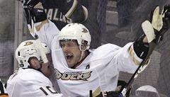 Jednačtyřicetiletý Selänne bude ještě rok hrát v NHL