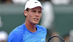 Wimbledon startuje: Berdycha čeká Volandri